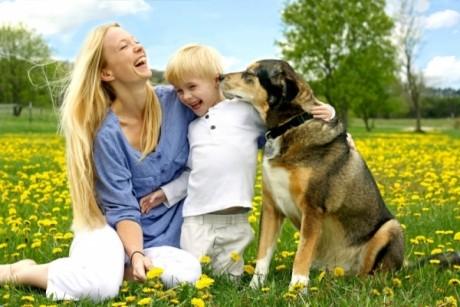 Copilul vrea un animal de companie? Ce trebuie să ştii înainte de a merge la pet shop