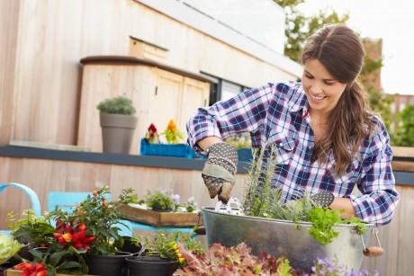 Grădină în container: 10 secrete care nu dau greş