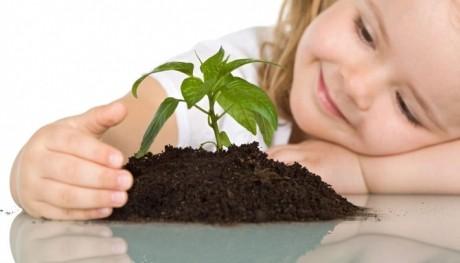 Ai nevoie de un copac? Plantează o CARTE pentru copii