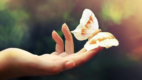 7 reguli psihologice care îţi fac viaţa mai bună